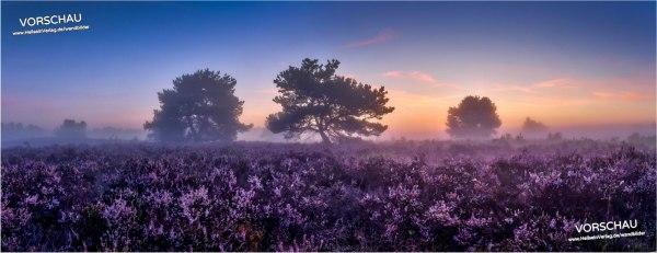 Wandbild »Mehlinger Heide«